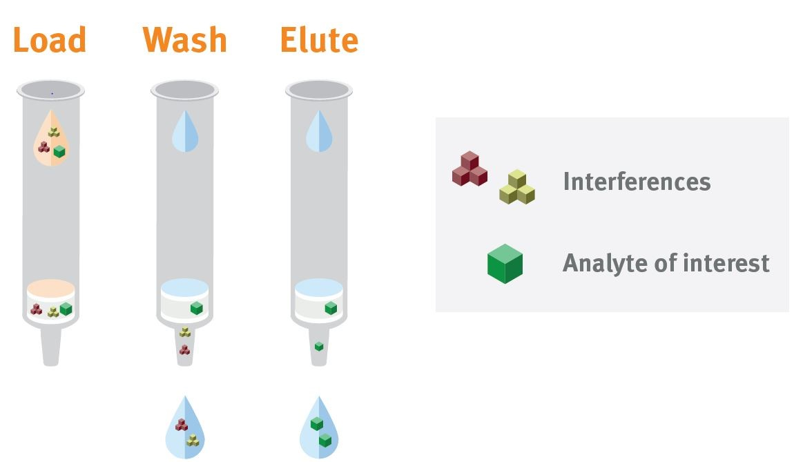 SLE, SPE and LLE – How are Those Different? – Expand Your Horizon